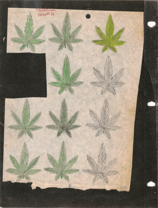 """MARAJUANA MADNESS"" found this in a copy of Led Zeppelin-In Through the Out Door"