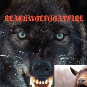 BLACKWOLFGOATFIRE